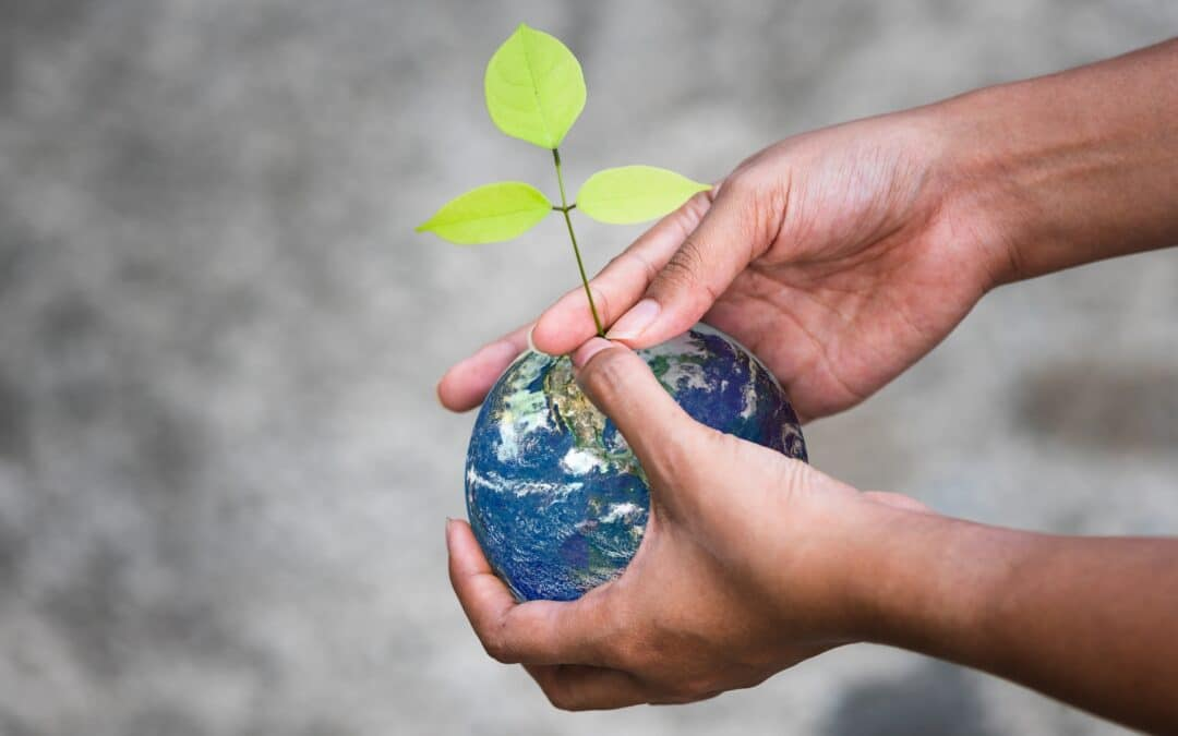 Sustainability in 2021: A bird's-eye view of prevalent ESG trends
